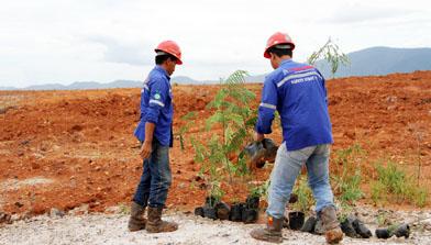 Jhonlin Group Peringati Hari Lingkungan Hidup
