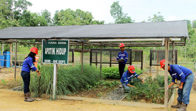 Peringatan Hari Lingkungan Hidup Jhonlin Group, Batulicin Kalimantan Selatan