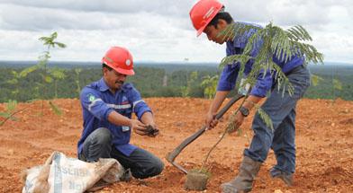 Jhonlin Group, Kalimantan Selatan, Batulicin, healthy life, h isam