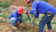 Jhonlin Group, Kalimantan Selatan, Batulicin, h isam, Hari Bumi, SHE