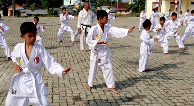 Jhonlin Group, Lemkari Jhonlin, Karateka, Lemkari, Kalimantan Selatan, Batulicin, h isam