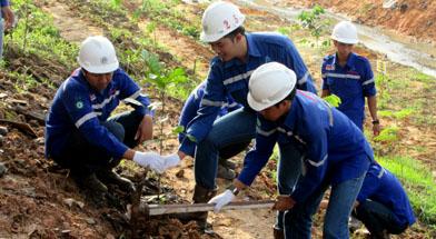 Jhonlin Group, Penanaman di PT. Jhonlin Baratama, Go Green, Kalimantan Selatan, Tanah Bumbu, Batulicin, h isam