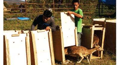 Jhonlin Group, LK Jhonlin Lestari, Penitipan Aset Negara, Kalimantan Selatan, Tanah Bumbu, Batulicin, h isam